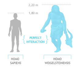 Homo Weigelsteinensis